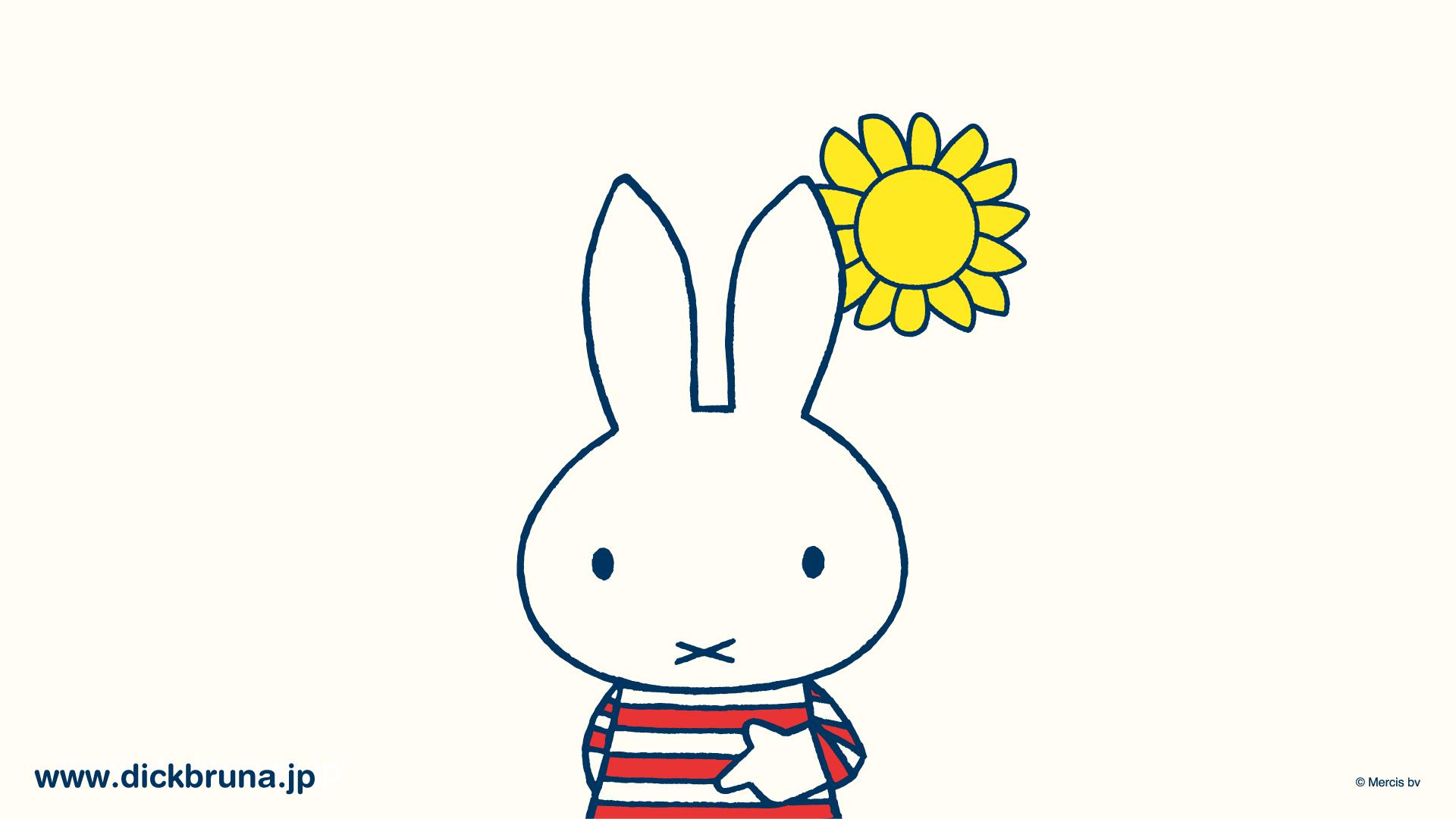 最新のhdミッフィー 壁紙 白 最高の花の画像