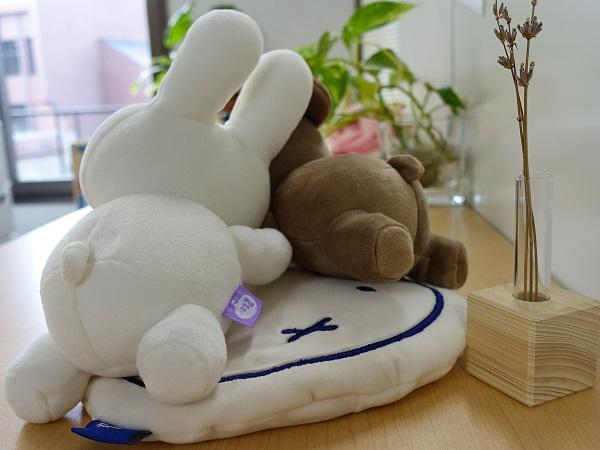 スモプラ_pillow