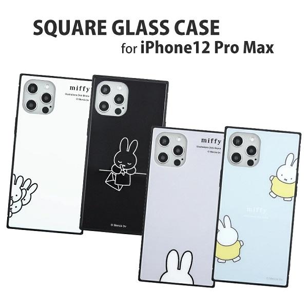 グルマンディーズ_glasscase
